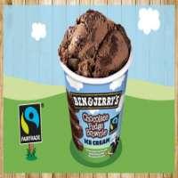 Ben & Jerrys Chocolate Fudge Brownie